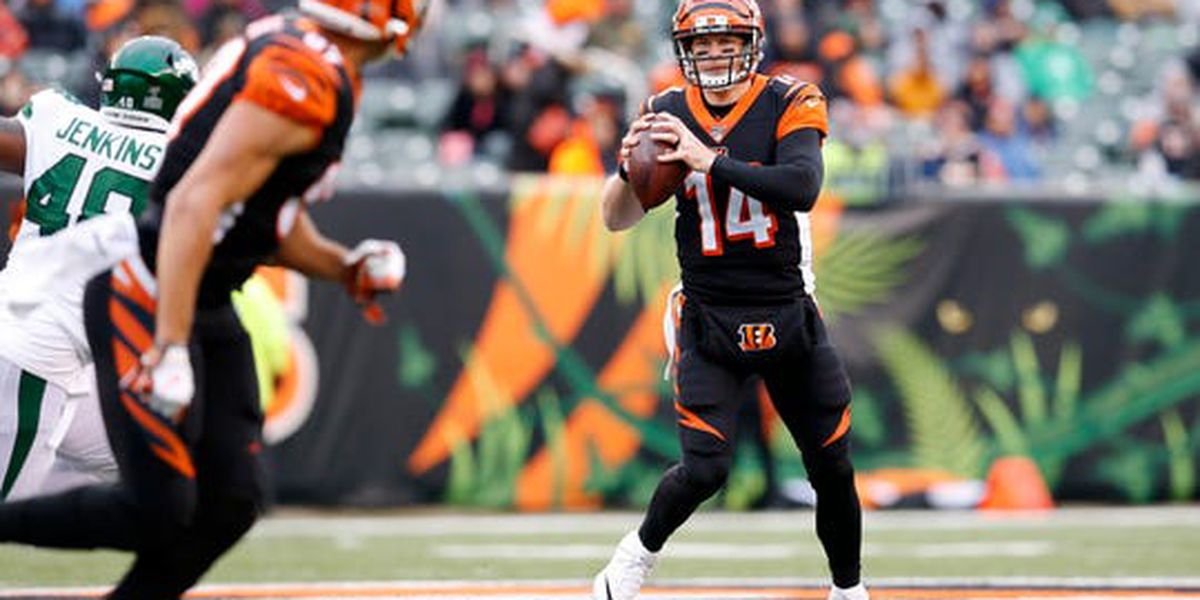 Bengals release QB Andy Dalton after 9 years with team
