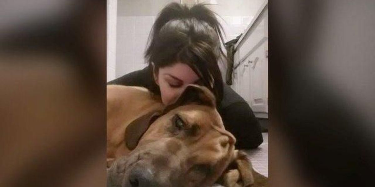 Soldier returns home from training to learn her dog was sold